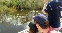 Sul da Flórida com crianças