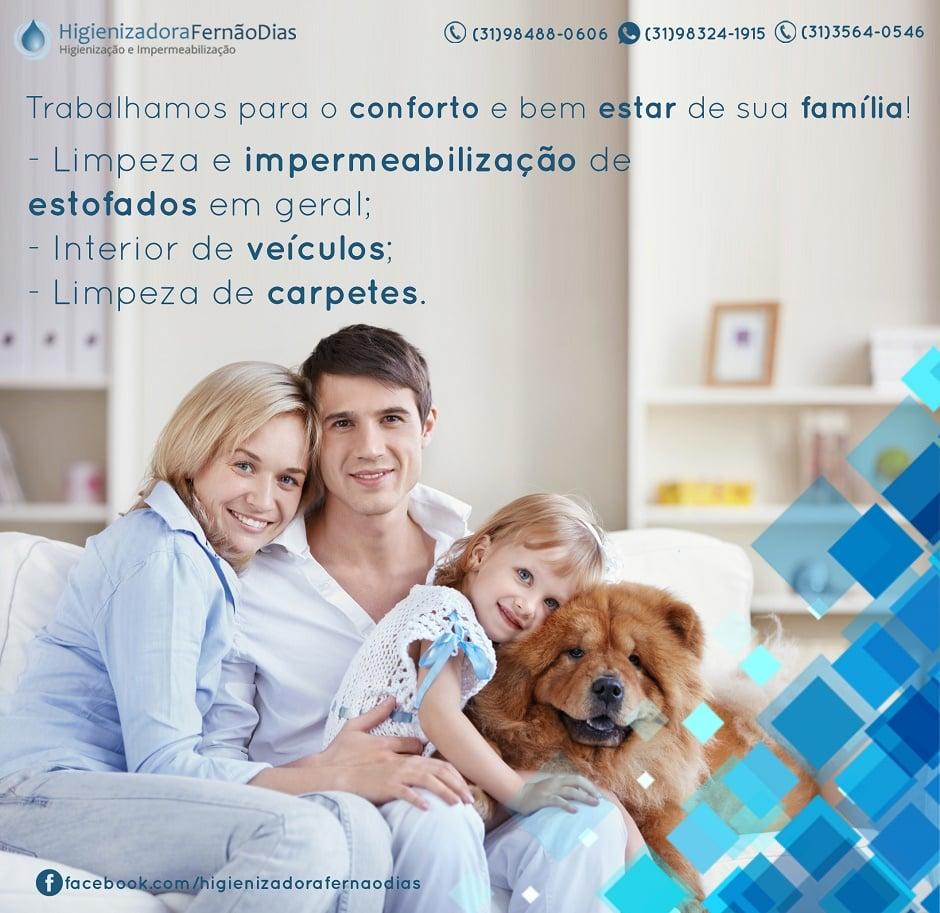 Higienizadora Fernão Dias